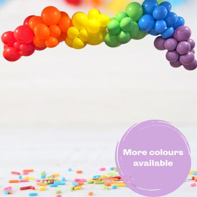Balloonista Rainbow Garland Cloud Inflated Diy Installation