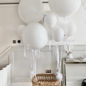 Baby Balloon Basket