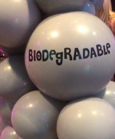 Biodegradable Balloons